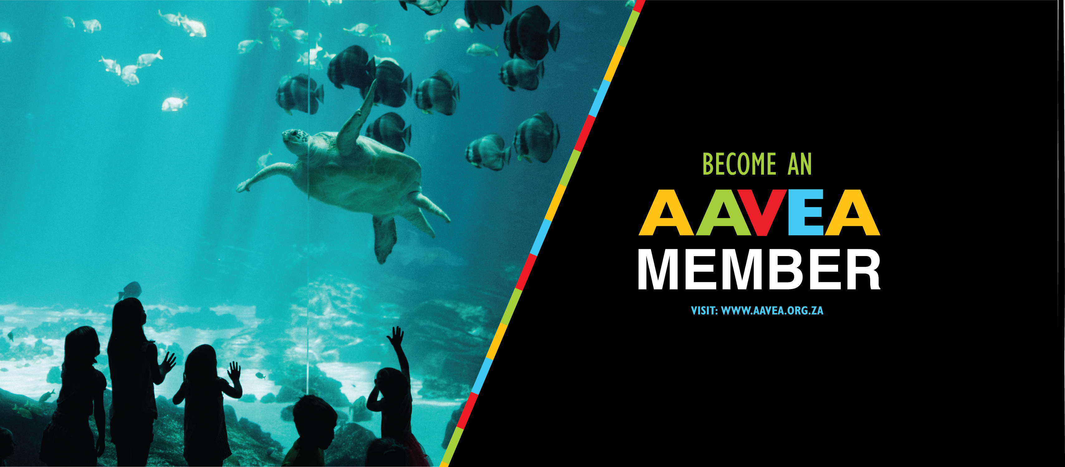 Register to be an #AAVEA2021 member TODAY!